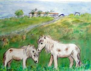 Pony Farm